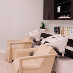 Shampoo-Bowel-Website